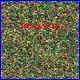 60814 AUHAGEN - Erba verde con fiori - granuli